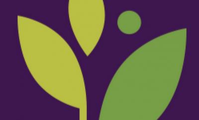 Athena Health API